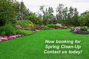 Now Booking Spring Clean up Contact us Today